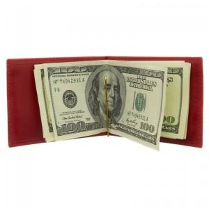 Зажим для денег RELS Darcy 74 1228