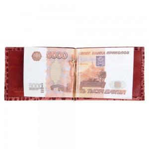 Зажим для денег RELS Дарси 74 0078
