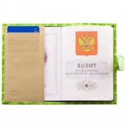 Обложка на паспорт RELS Орки-х 72 0206